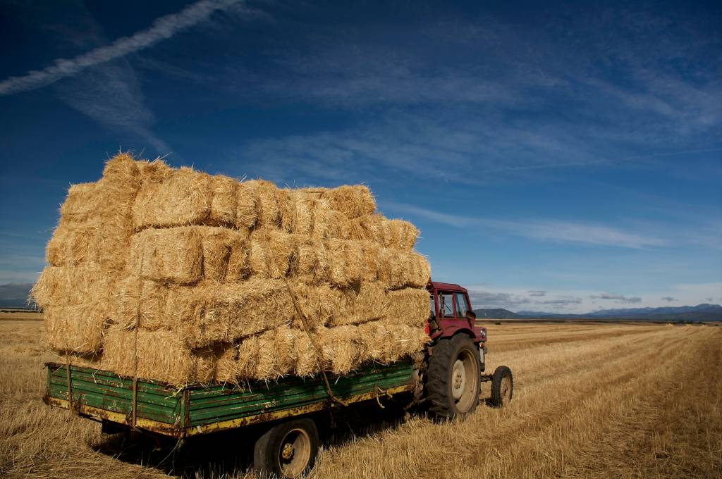 09 Acarreo tractor