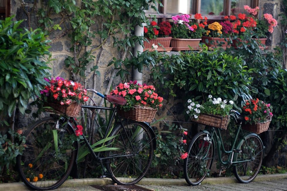 Bicicletas Riaño